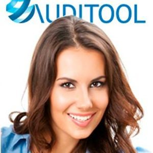 Profile picture for www.auditool.org