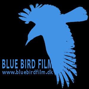 Profile picture for Blue Bird Film