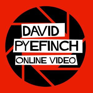 Profile picture for David  Pyefinch
