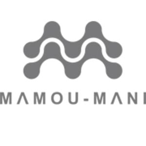 Profile picture for Arthur Mamou-Mani