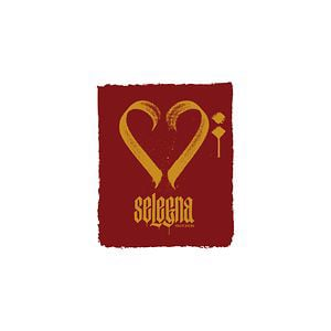 Profile picture for Selegna Records