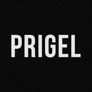 Profile picture for prigel