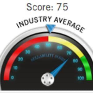 Profile picture for The Sellability Score