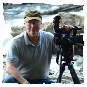 Profile picture for Mark Williams