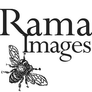 Profile picture for Rama Images