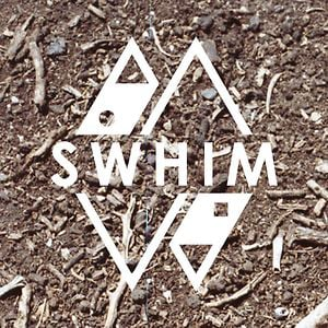 Profile picture for SWHIM