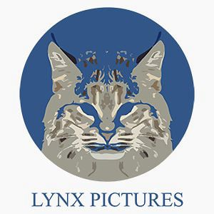Profile picture for Lynx Pictures