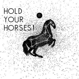 Profile picture for Hold Your Horses !
