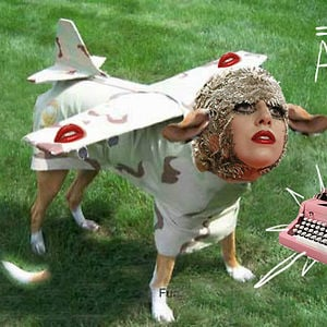 Profile picture for gagathrone