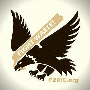 Profile picture for P2Ric Webinars