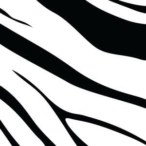 Profile picture for Team Zebra Squad Alpha