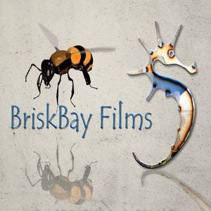Profile picture for BriskBay Films
