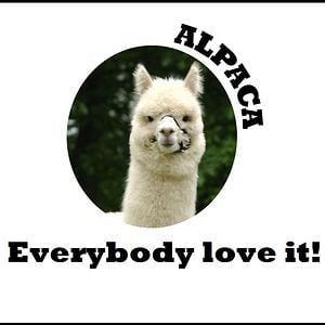 Profile picture for Alpaca Love it