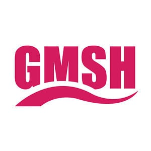 Profile picture for GMSH
