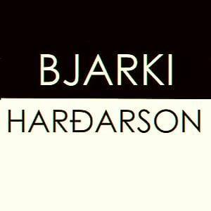Profile picture for bjarki hardarson