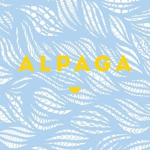 Profile picture for alpaga groupe