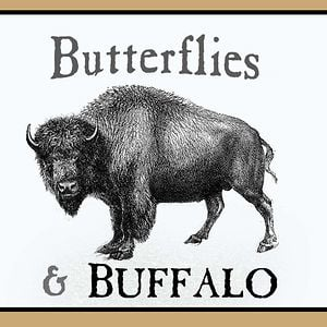 Profile picture for Butterflies & Buffalo