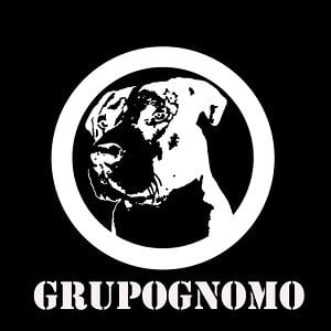 Profile picture for GrupoGnomo
