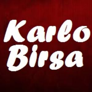 Profile picture for Karlo Birsa