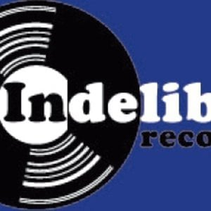 Profile picture for Indelible-records