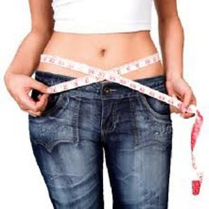 Profile picture for Hoodia Weight Loss