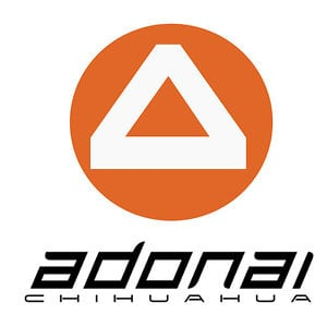 Profile picture for Adonai Ch