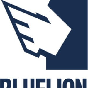 Profile picture for Blue Lion Digital