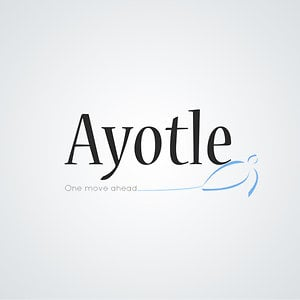 Profile picture for Ayotle