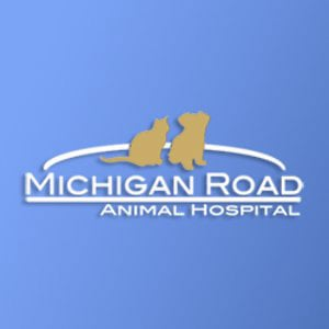 Profile picture for Michigan Road Animal Hospital