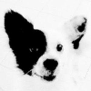 Profile picture for jjackk