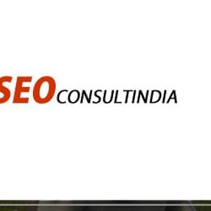 Profile picture for SEO Consultants India