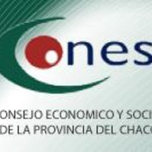 Profile picture for Consejo Economico y Social CHACO