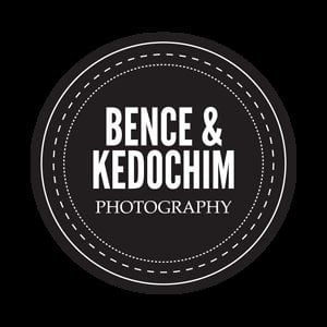 Profile picture for Bence Kedochim