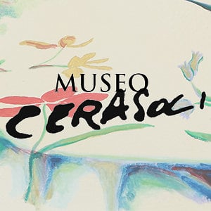 Profile picture for Museo Cerasoli