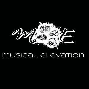 Profile picture for Musical Elevation