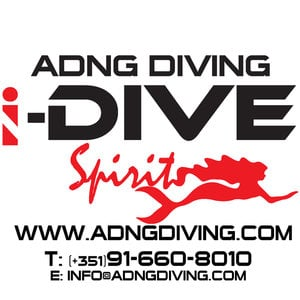 Profile picture for ADNG DIVERS