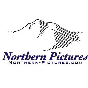 Profile picture for Northern Pictures