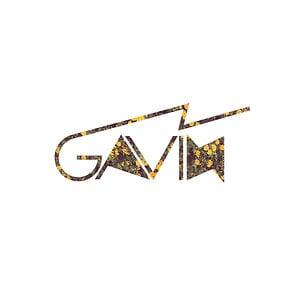 Profile picture for GAVIN TUREK