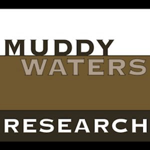 Profile picture for Muddy Waters