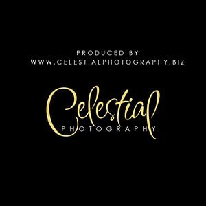 Profile picture for Celestial Photography and Film