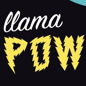 Profile picture for llama power