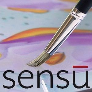 Profile picture for Sensu Inc.