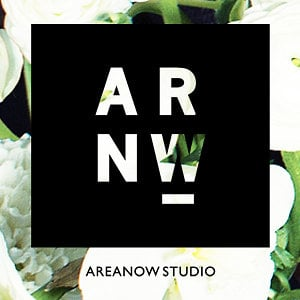 Profile picture for Areanow Studio