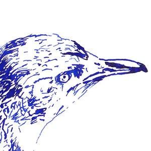 Profile picture for Perdita Phillips