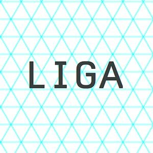 Profile picture for LIGA