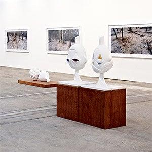 Profile picture for Tolarno Galleries