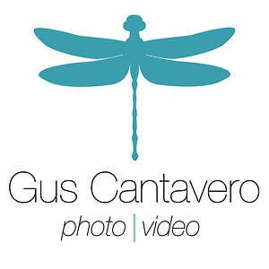 Profile picture for Gus Cantavero