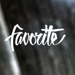 Profile picture for Favorite Skateboards