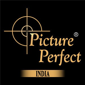 Profile picture for Picture Perfect India