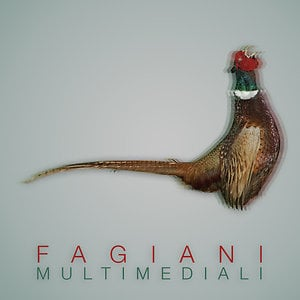 Profile picture for Fagiani Multimediali